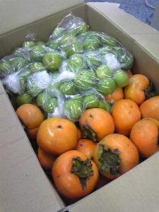 柿とスダチ