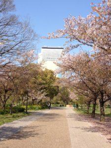 大阪城公園外堀