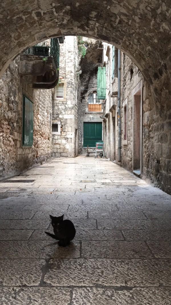 split_cat2