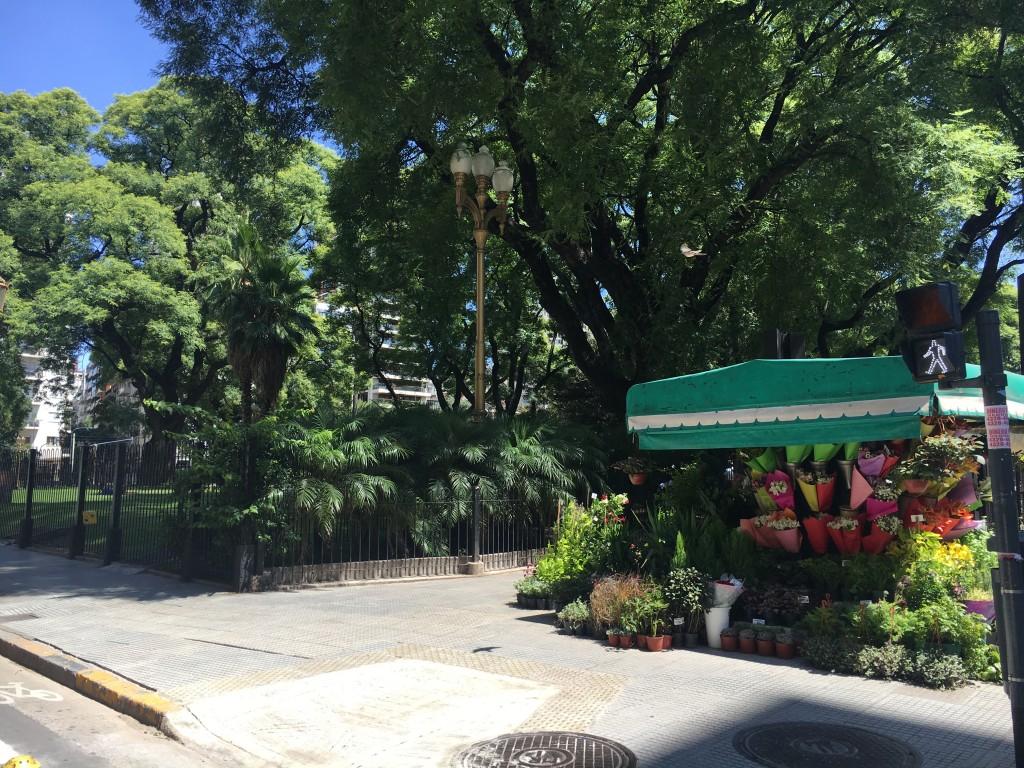 公園に隣接しているお花屋さん